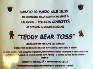 palocco polaris teddy bear toss